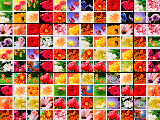 Маджонг цветочная страна